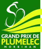 Cycling - Grand Prix de Plumelec-Morbihan - 2014 - Detailed results
