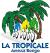 Cycling - La Tropicale Amissa Bongo - 2017 - Detailed results