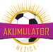 Football - Soccer - NK Akumulator 2015
